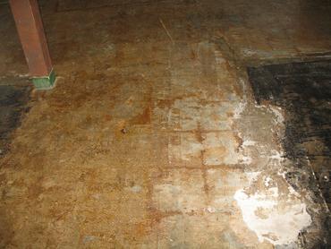 VCT Flooring Tiles - Before