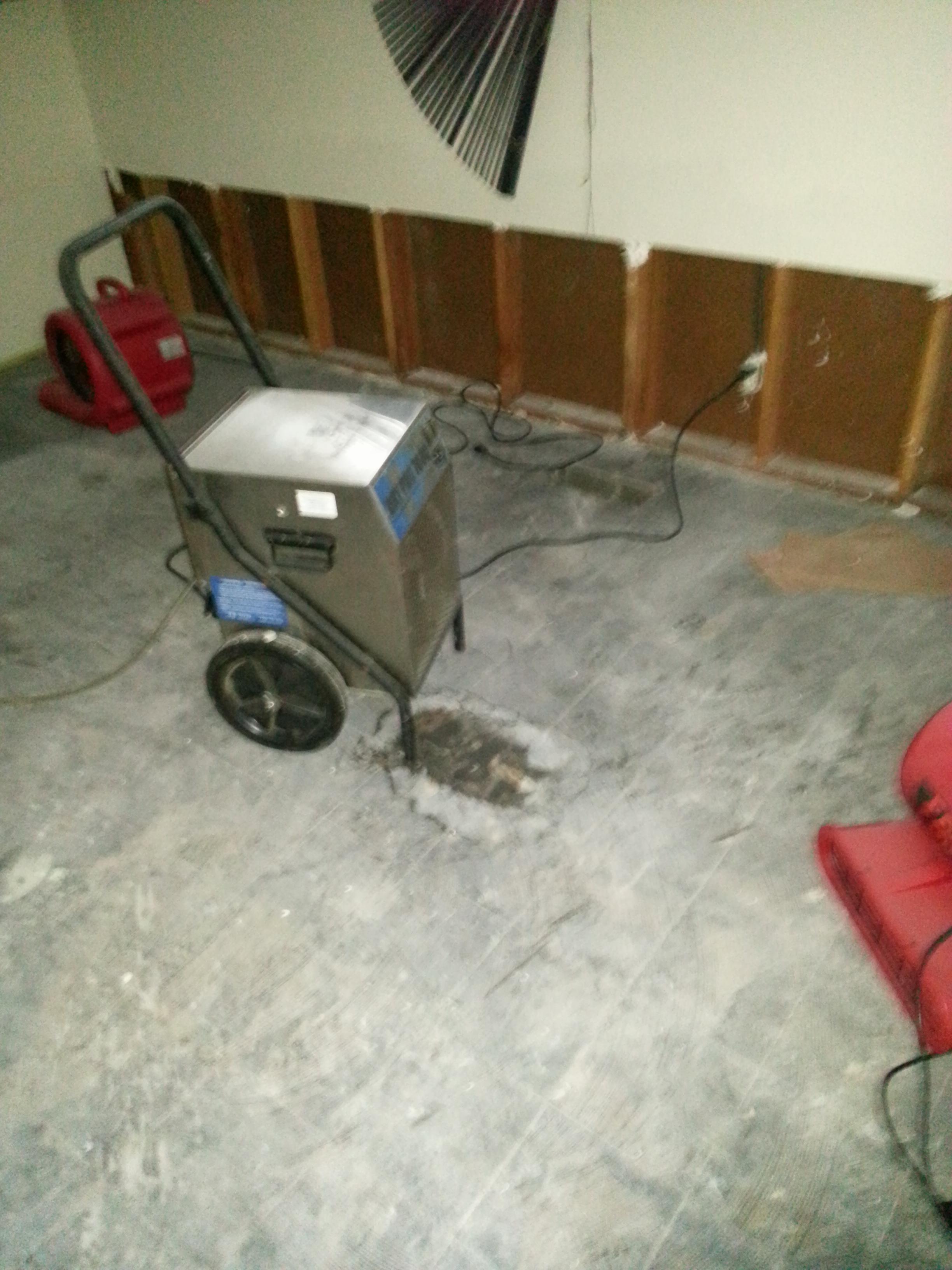 Water Damage Repair - During