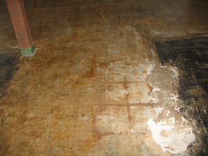 VCT Flooring Tiles - Before
