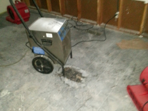 Water Damage Repair - During